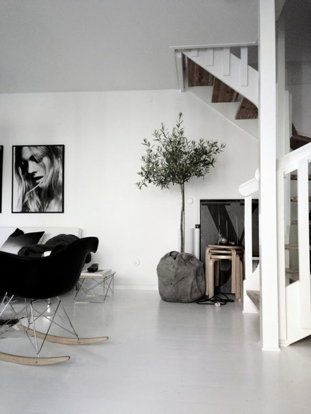olijfboom, interieur, kerstboom, eigenhandig